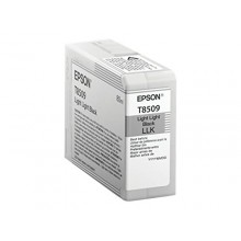 Epson Cartuccia d'inchiostro light light black C13T850900 T850900 80ml